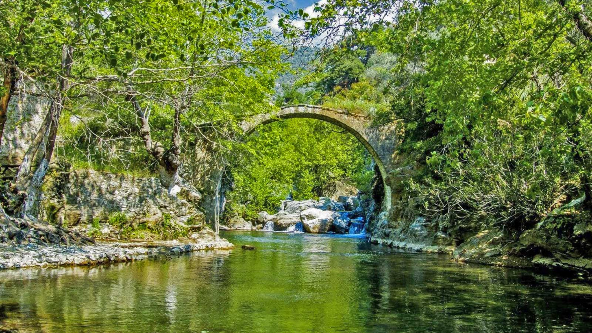 Aegean forest and bridge